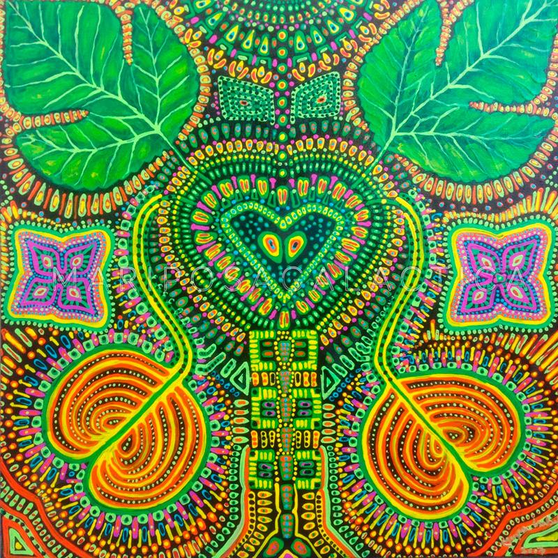 plant-medicine-heart-medicine-ayahuasca
